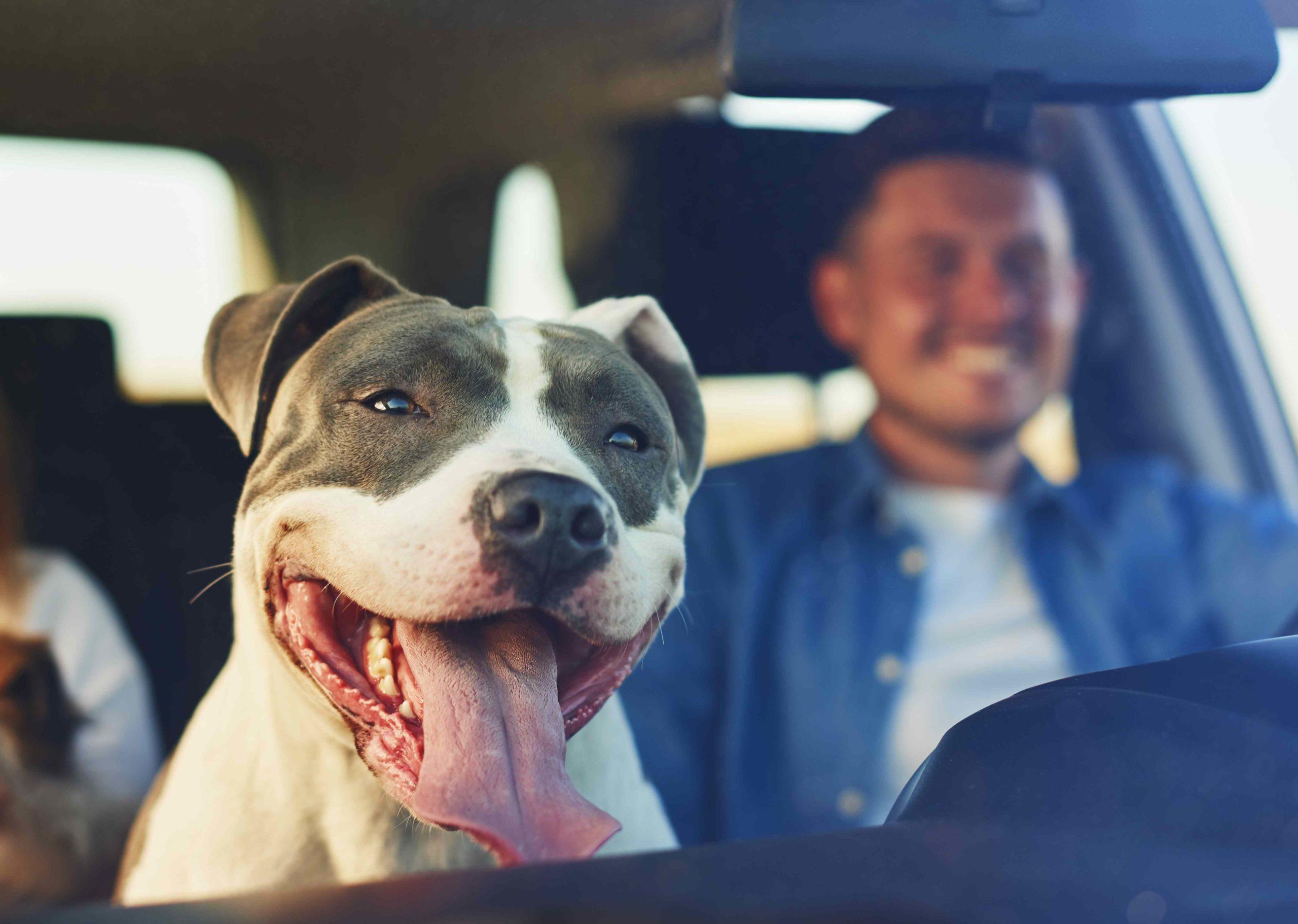 auto insurance prosper texas